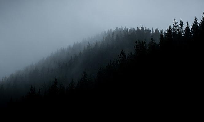 665 x 400 misty hills