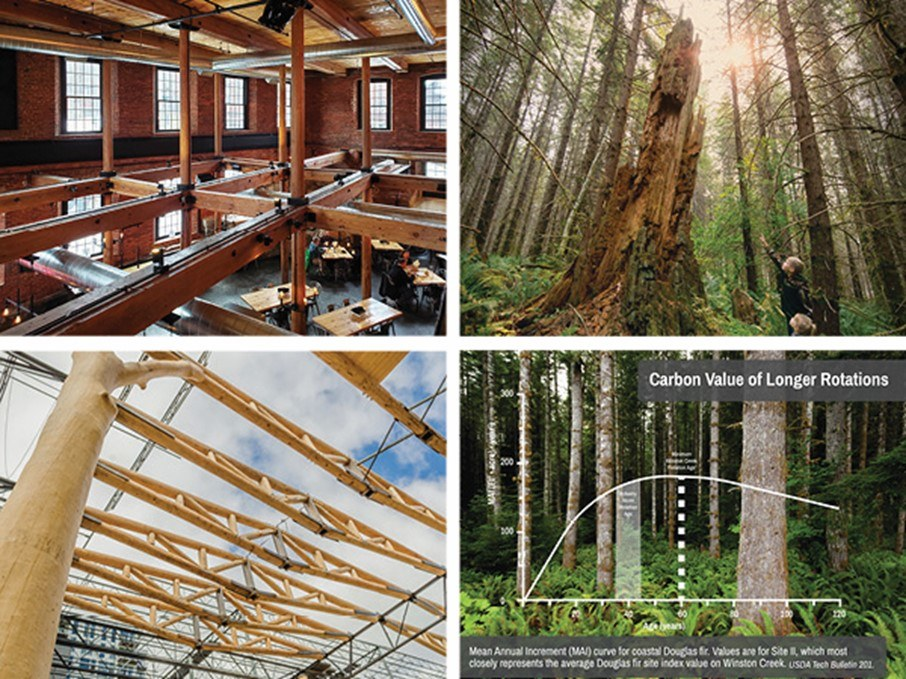 WholeTrees Structures & Port Blakely bring Certified Carbon Forest mass timber products to market